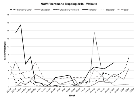 2016 season-long NOW trapping data for six walnut orchards in Butte & Glenn Counties.