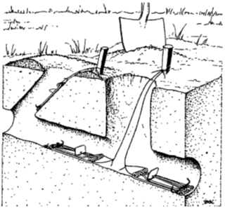 Photo 4. Diagram of gopher tunnels showing placement of gopher traps. Two traps set in opposite directions in the main tunnel is better trap set. The lateral tunnel trap (on left) is easier to set up but has less productive trap capture. From: Marsh, 1998, Proceedings of the Eighteenth Vertebrate Pest Conference.