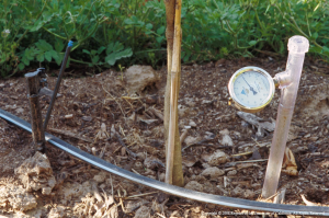 This tensiometer with a vacuum pressure gauge is one of several accurate and reliable devices for measuring soil moisture and scheduling irrigation.