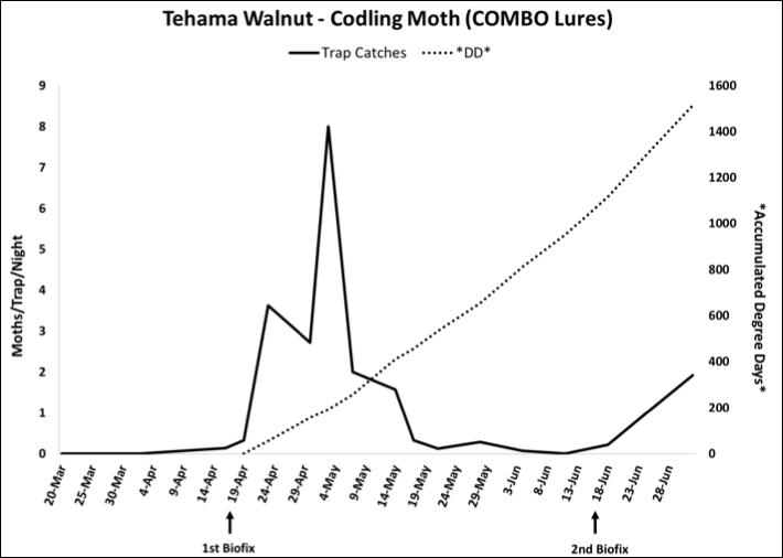 2018 Codling Moth Trap Data - Tehama Co. Walnut