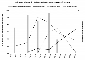 2019 Spider mite & Predator Leaf Count Data - Tehama Co. Almond