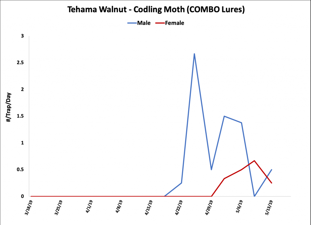 2019 Codling Moth Trap Data - Tehama Co. Walnut