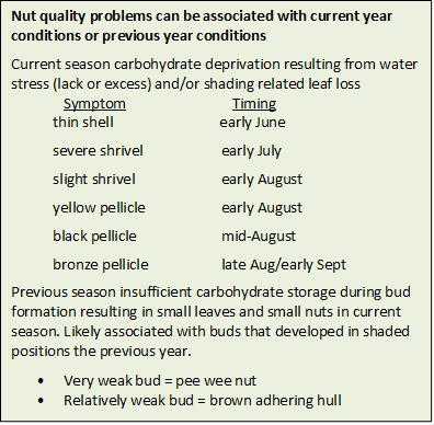 Maximizing walnut quality to improve value in a low-price year