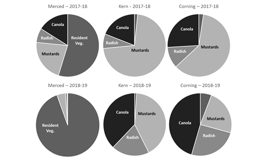 Figure 2. Percentage of biomass (dry weight) represented by resident vegetation, mustards, radish, or canola. Each site was planted with the same seed mix (45% mustards, 20% radish, 35% canola) in winter 2017-18 (top row) and 2018-19 (bottom row). (Data courtesy A. Gaudin & C. Creze, UC Davis.)