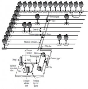 Figure 2. Schematic showing orchard irrigation system beginning with the well and pumping plant and extending out to the last lateral line and sprinkler or dripper.
