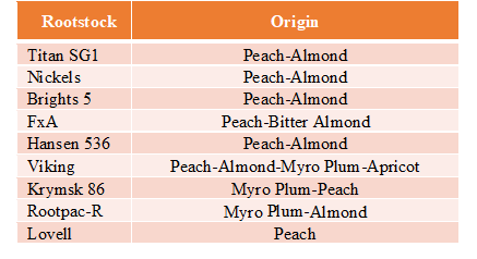 Table 1. Almond boron rootstock trial tree genetic backgrounds