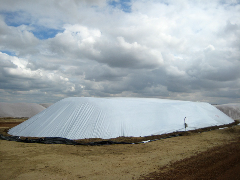 Covered stockpiles: Designed to avoid moisture accumulation with N/S orientations, flat/smooth tops, and are ideally on a raised surface to avoid ponding (photo courtesy of Almond Board of California).