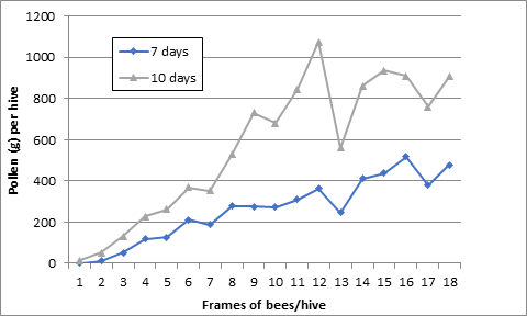 Average pollen collected per hive for a range of hive strengths based on frames of bees per hive over a 7 or 10 day period. Data from Sheesley and Bernard, Cal Ag, 1970 (http://calag.ucanr.edu/archive/?article=ca.v024n08p5)